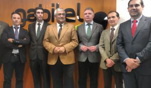 Visita institucional a Gabitel Ingenieros.