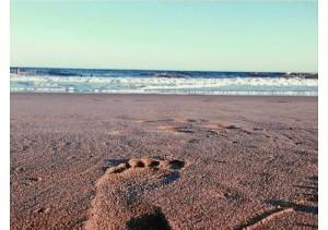 Recuerda mucho las playas de Huelva.