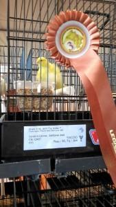 El onubense ha sido bronce en el Mundial de Ornitología celebrado en Almería este mes de enero.