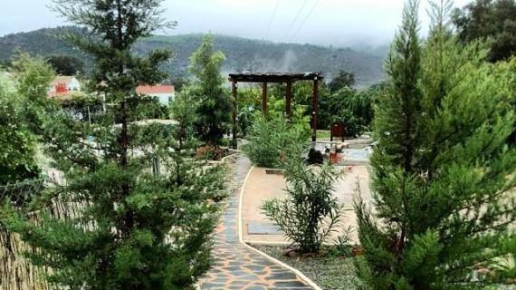 Berrocal Rural, un alojamiento que tiene en su poder la 'Joya del Tinto'