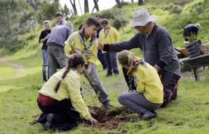Los pequeños scouts han conseguido plantar 150 árboles.