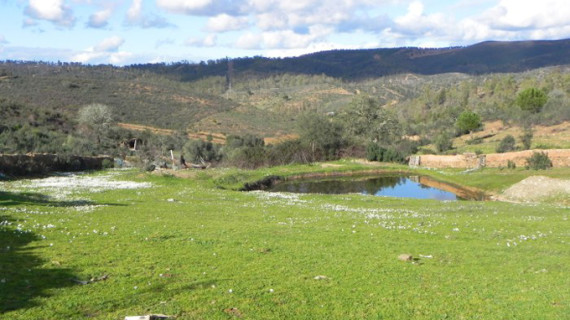 Respaldo económico a la puesta en riego de más de 5.200 hectáreas en la comarca del Andévalo