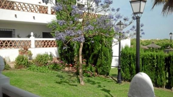 Hotel Valsequillo de Lepe, un concepto único para disfrutar de la naturaleza en la Costa de Huelva durante todo el año