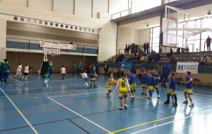 Ayamonte sigue apostando por el baloncesto de base con la organización del Andaluz Cadete.