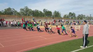 Resistencia, velocidad, lanzamiento de peso y salto de longitud, las pruebas de estas Olimpiadas.