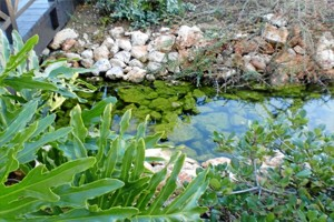 El Gobierno andaluz quiere avanzar hacia una economía circular del agua plena.