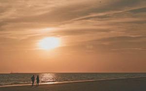 El cliente puede disfrutar de 60 kilómetros de playas vírgenes.