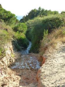 Los accesos a esta playa se encuentran en muy mal estado. / Foto: José Luis Perera Moreno.