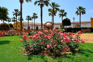 Un lugar encantador en el Condado de Huelva.