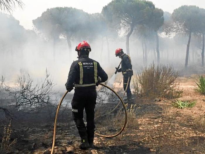 Efectivos trabajando en labores de extinción del incendio.