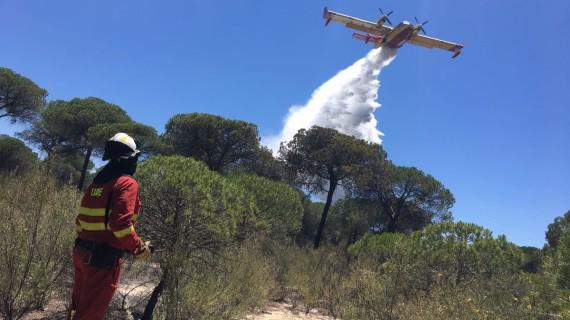 200 efectivos seguirán trabajando esta noche en el incendio de Mazagón, que continúa activo
