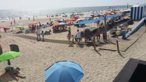 especial playas matalascañas