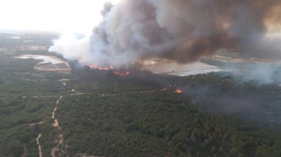 El incendio de Doñana según la Ciencia