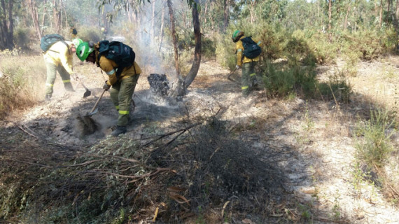 El Infoca logra estabilizar el incendio forestal de Aroche y extinguir el de Bonares
