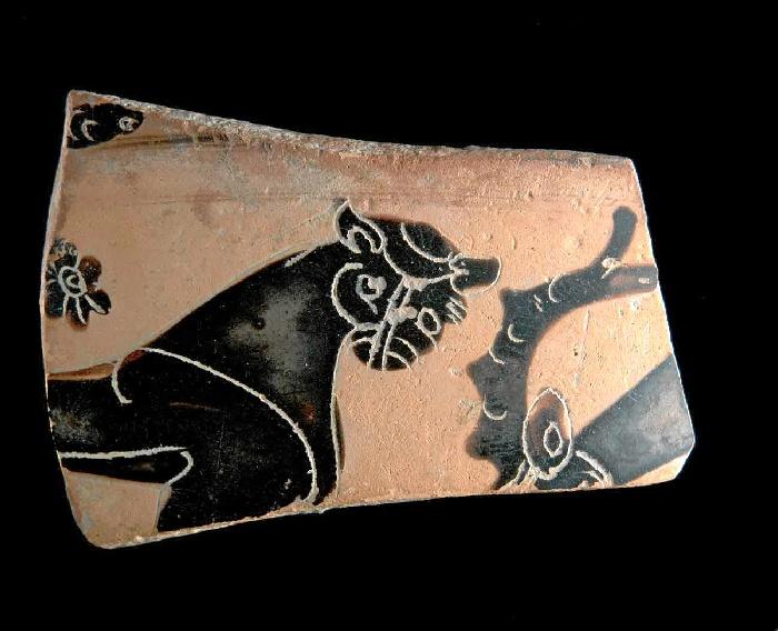 Fragmento de ánfora con representación de felino del siglo VI a.C. hallado en la calle Méndez Núñez.