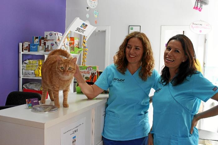 Teresa Suárez y Carmen Martín, responsables de la Clínica Veterinaria Bichos. / Foto: Laura Cebrino.