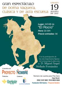 Cartel_Doma_Proyecto Hombre_2017