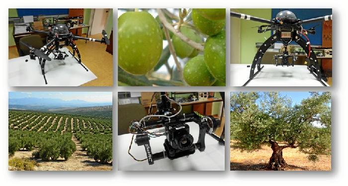La Universidad de Huelva investigará mediante drones el cultivo de precisión del olivo