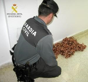 Detenidas dos personas por el robo de cableado de cobre en Bonares.