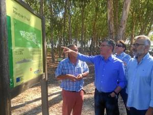 Un momento de la visita al Arboreto de El Villar, un eucaliptal de referencia en Europa.