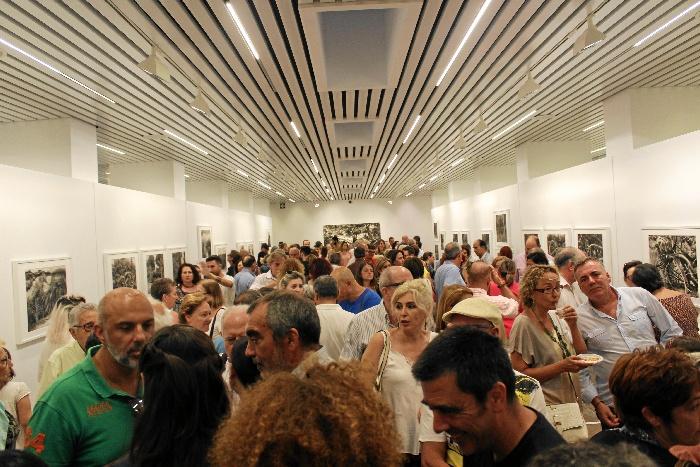 La Sala de la Provincia muestra el 'Oculto esplendor' de Doñana a través de la mirada esencial de Seisdedos