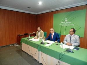 Presentación Plan Salud Accesibilidad.