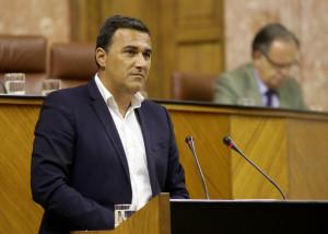 Imagen del parlamentario de Ciudadanos.