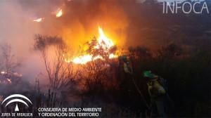 Incendio en La Granada de Riotinto.