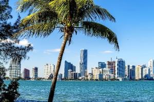 Tras meditarlo durante un tiempo, decidió aceptar una oferta de trabajo en Miami.