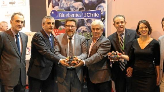 La alianza de Freshuelva con productores de Chile, un puente hacia una mayor internacionalización