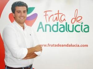 El economista Juan Manuel Vivas, gerente de 'Fruta de Andalucía'.