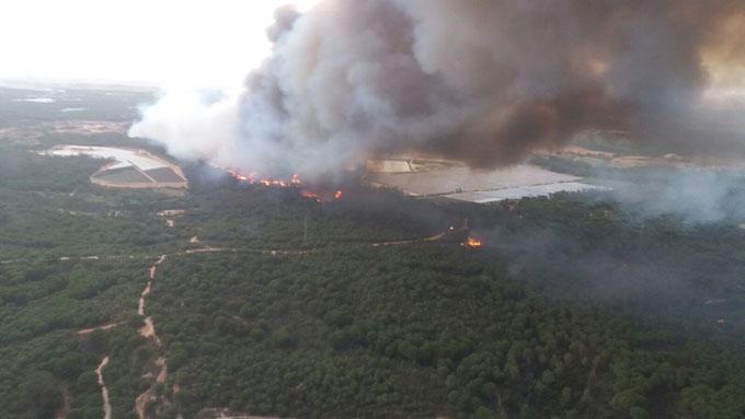 foto_aerea_incendio_donana_infoca