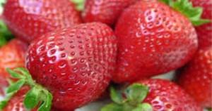 La fresa y el arándano constituyen el 90% de su producción.
