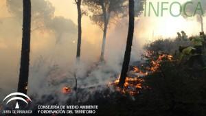 Imagen del incendio de Moguer. / Foto: Plan Infoca.