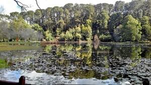 Parque Saval, uno de sus lugares preferidos de la ciudad.
