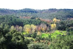 Un sendero que nos permite disfrutar de bellos paisajes. / Foto: Junta de Andalucía.