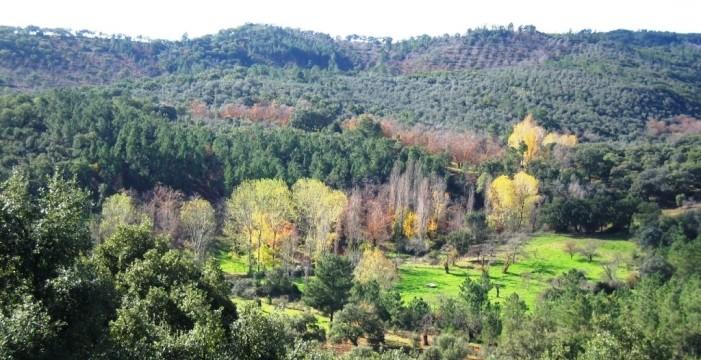 Una web considera a la Sierra de Aracena un paraíso para los ecoturistas