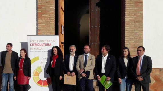 Expertos señalan el mercado ecológico como pieza clave para impulsar el sector de los cítricos españoles
