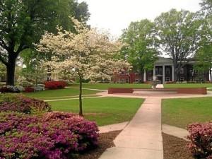 Carlos está estudiando en la universidad de Newberry College de Carolina del Sur. / Foto: Sports-Management-Degrees.com