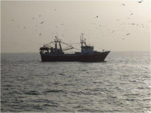La flota de José Martí Peix faena en caladeros tradicionales para los barcos onubenses.