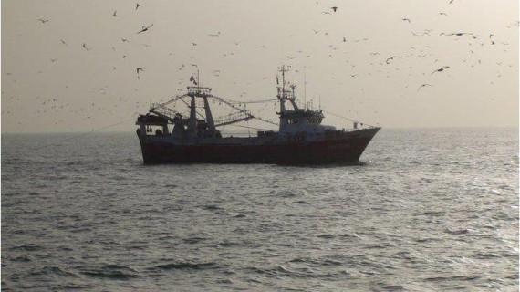 Peix, consiguiendo que la gamba llegue desde la mar hasta el mismo paladar