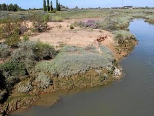 Otra imagen de la zona de fosfoyesos. / Foto: change.org.