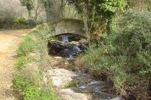 Dada su extensión, en un próximo artículo nos adentraremos en los senderos de la comarca del Condado y la Costa de Huelva. / Foto: Junta de Andalucía.