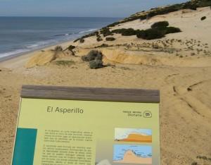 Este sendero nos lleva hasta el monumento natural de 'El Asperillo'. / Foto: Junta de Andalucía.