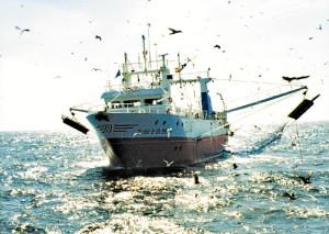 La empresa de buques de pesca, Baltimar, S.A (Herederos de Ángel Muriel) es un referente en su sector.
