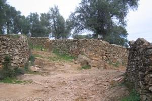 Tramo del sendero 'Camino de la Víbora'. / Foto: Junta de Andalucía.