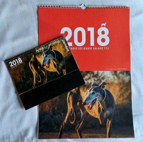 Una fotografía del onubense Julián Ropero ilustra un calendario para salvar los galgos