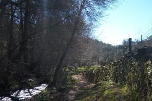 Imagen de este sendero de Santa Ana la Real. / Foto: Junta de Andalucía.