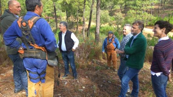 Reanudan los trabajos preventivos en los montes onubenses
