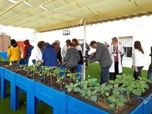 Nueva terraza para el desarrollo de actividades lúdico-educativas al aire libre.